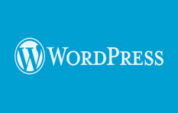wordpress-p30